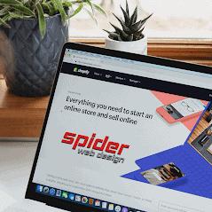 spider web design comany a digital papercuts marketing company