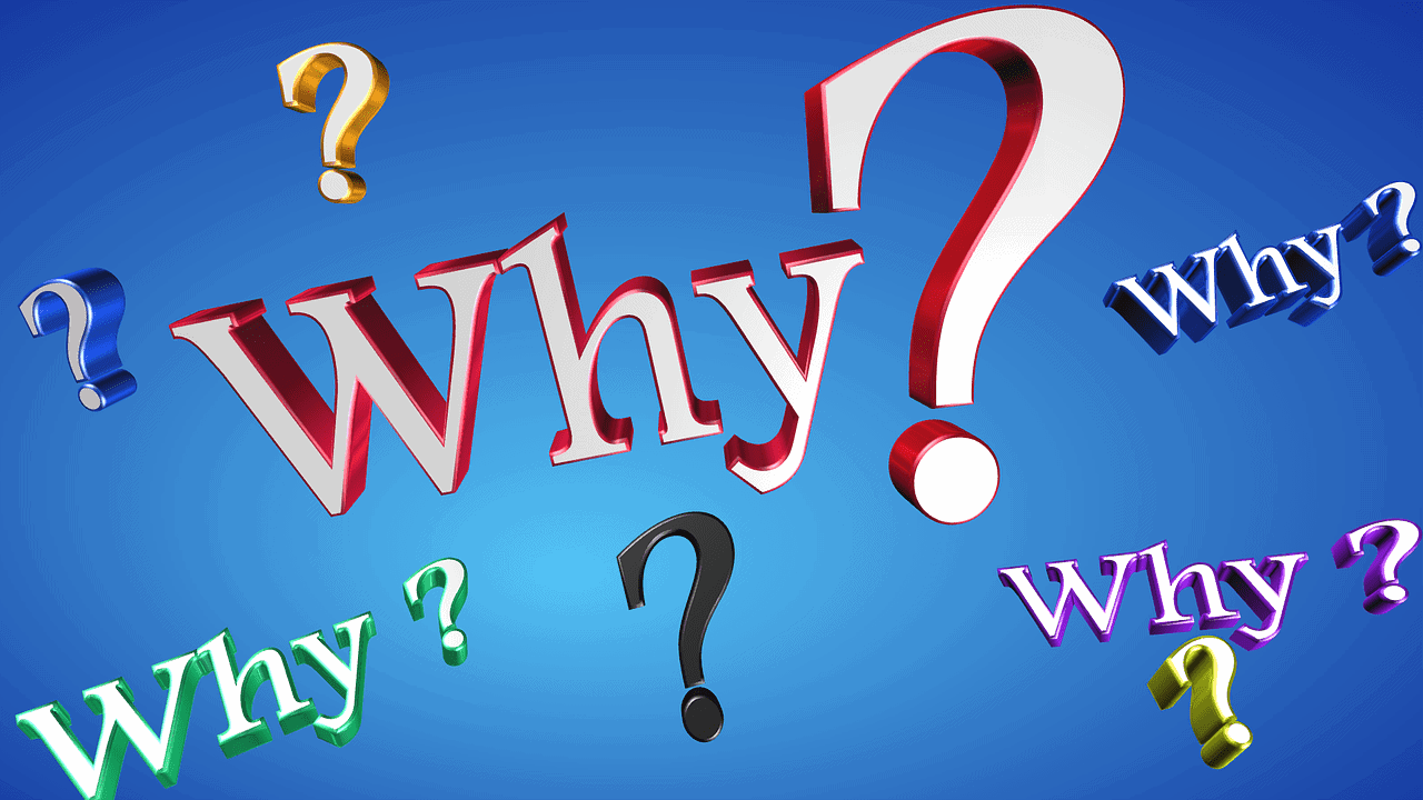 The Why Question-Why Most New Businesses Fail And How You Can Make Sure You Don't Do The Same Thing.